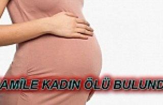 Hamile Kadın Evinde Ölü Bulundu