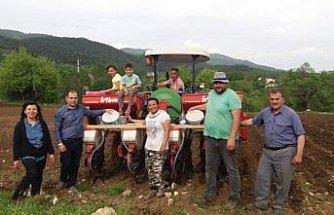 Mengen'de 20 dönüm araziye kuru fasulye ekildi