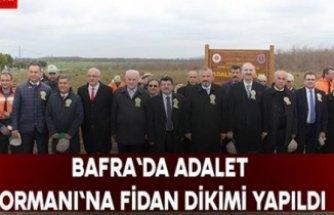 BAFRA`DA ADALET ORMANI`NA FİDAN DİKİMİ YAPILDI