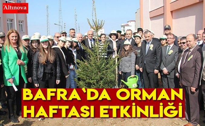 Bafra`da Orman Haftası etkinliği